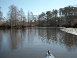 Oakum Creek at Munden Point Park (Kayak Virginia Beach Images © Paul Perusse)