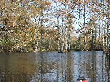 Fall on the Northwest river (Kayak Virginia Beach Images © Paul Perusse)
