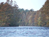 Northwest River, Chesapeake Virginia (Kayak Virginia Beach Images © Paul Perusse)