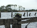 Hunt club remnants at Horn Point (Kayak Virginia Beach Images © Paul Perusse)