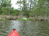 Small boat in the reeds (Kayak Virginia Beach Images © Paul Perusse)