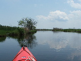 Back Bay NWR (Kayak Virginia Beach Images © Paul Perusse)