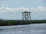 Tower in marsh (Kayak Virginia Beach Images © Paul Perusse)
