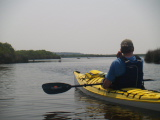 Deer crossing the channel (Kayak Virginia Beach Images © Paul Perusse)